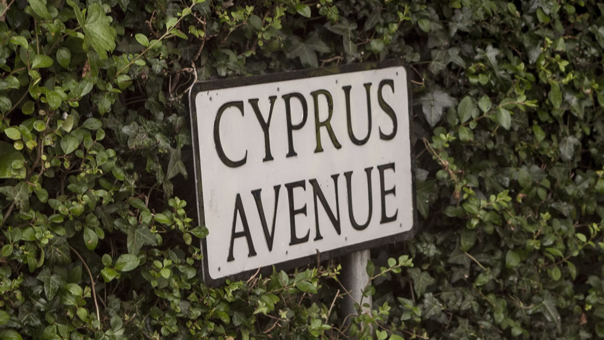 'Caught One More Time' – Van Morrison on Cyprus Avenue 2015